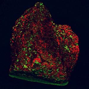 Meteorite01-10