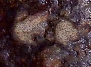 Meteorite02-03