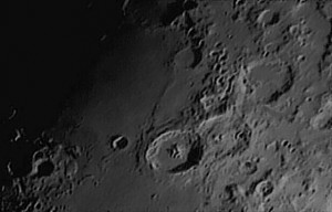 Moon-Dynamax