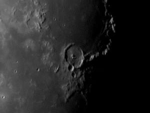Moon-Dynamax12