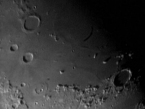 Moon-Dynamax21