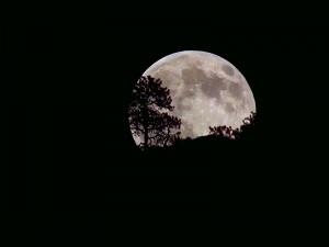 Moon-Riseset07